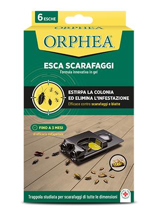 Orphea-Protezione-Casa-insetticidi-320x420-188183_Esca_Scarafaggi_6pz